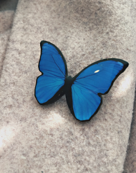 "Brooch ""Ocean butterfly"""