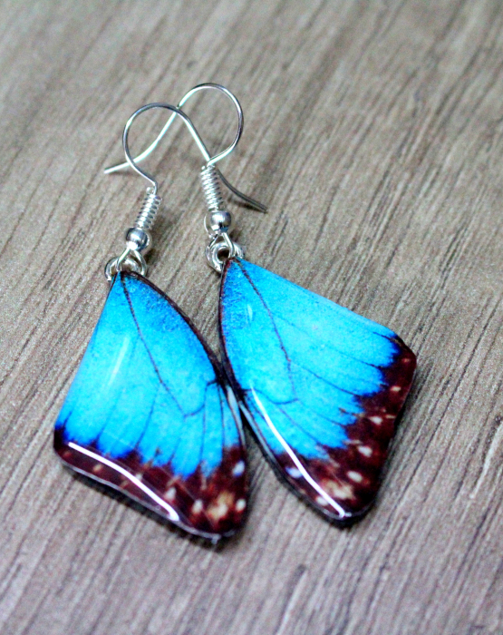 "Earrings ""Butterfly wings"" - blue"