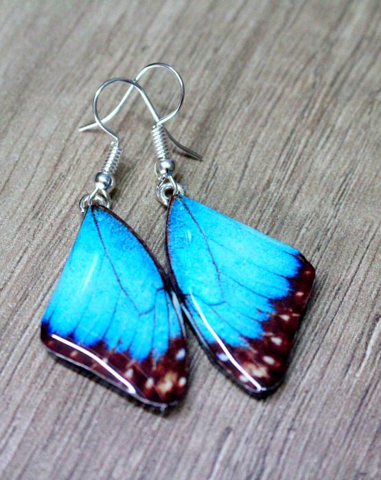 "Auskari ""Taureņu spārni""  - zili"